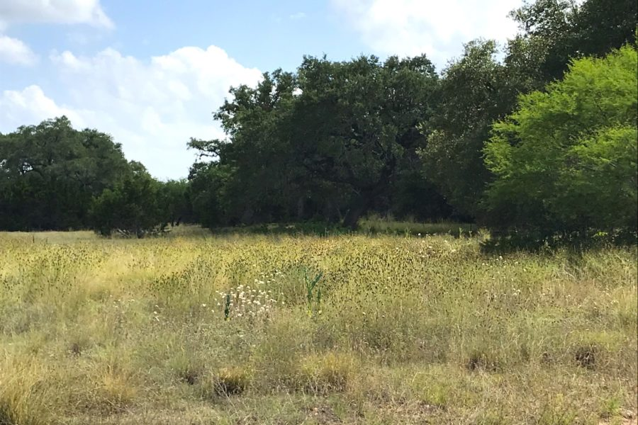 Lot 4 in the Springs of Cordillera Ranch