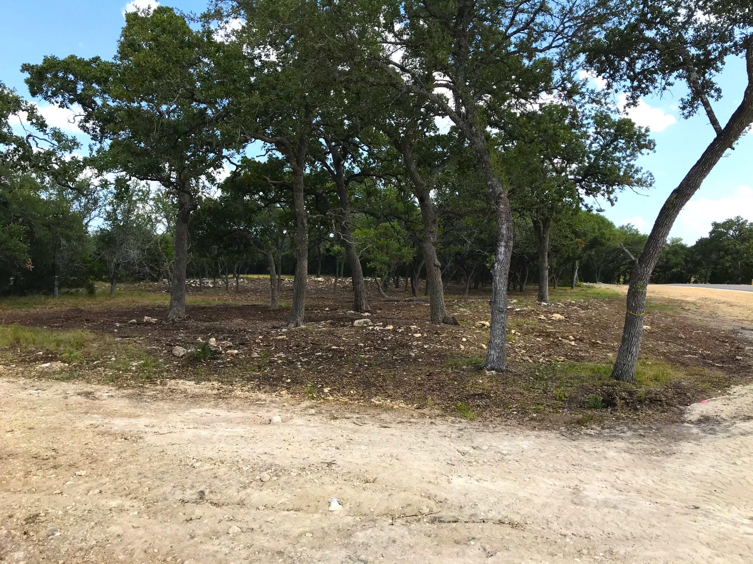 Lot 1 in Belle Oaks - a premier large acreage community